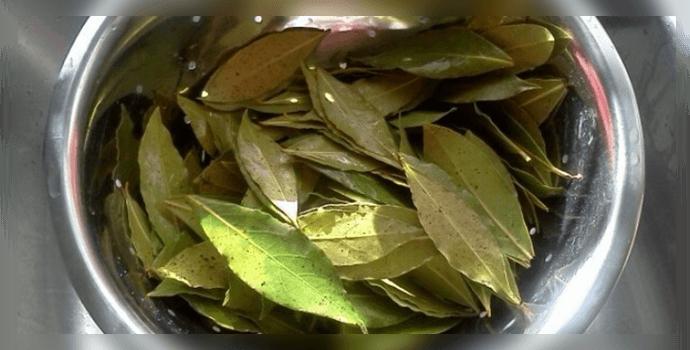 Народні засоби від псоріазу – покрокові інструкції для домашнього лікування
